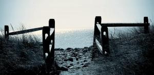 gates-of-heaven-lori-cooney