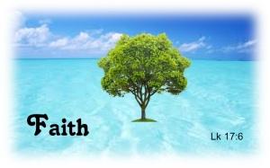 faith-lk-17-6